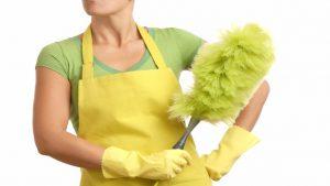 Tipo di lavoro domestico